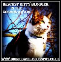 Bestest Kitty Blogger Award