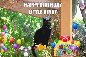 Happy Birthday Binky