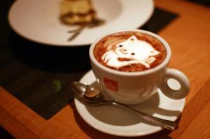 Kat koffie