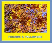 friends-followers-award
