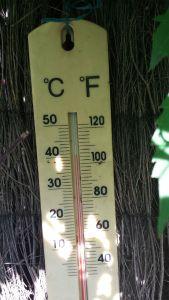 real temperature