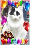 birthdaymichellefix
