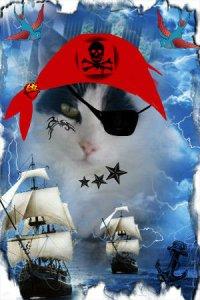 Pirate Binky