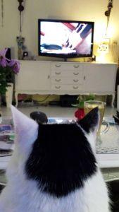 watching tele..