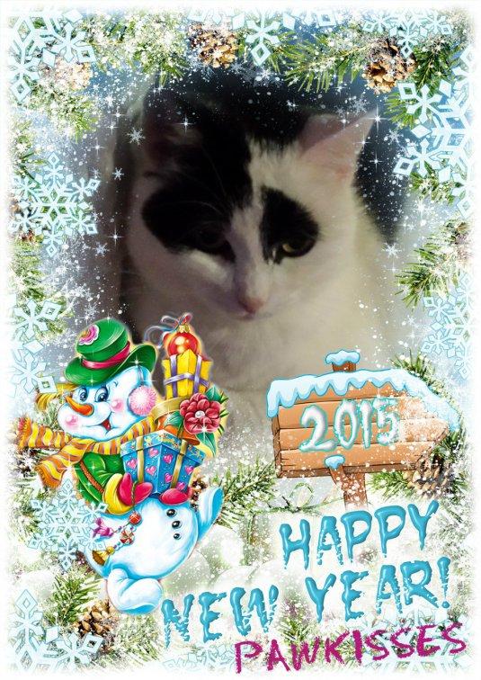 Binky nieuw jaar 2014-2015fix