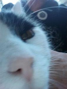 Selfie18-1.3