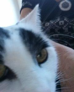 Selfie18-1.4