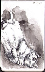 thomas-dalsgaard-clausen-2015-04-14-drawing-of-binky-the-cat