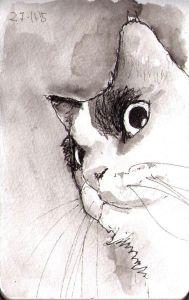 sketch Thomas