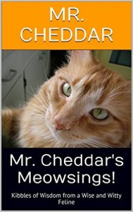 mr cheddar