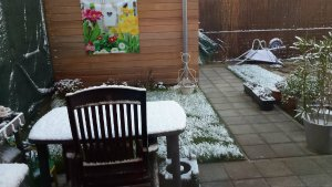 SnowySelfies