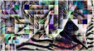 CaturdayArt2022016finish0