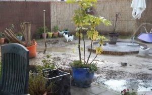 gardenactivitiescontinues