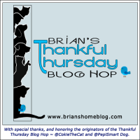 brianshome-thankfulthursday-bloghop