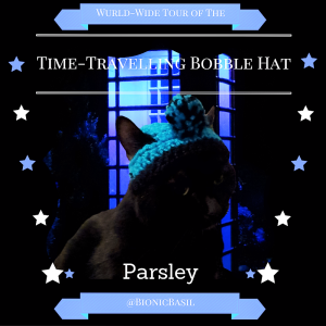 parsley-the-wurld-wide-tour-of-the-time-travelling-bobble-hat-bionicbasil
