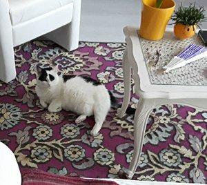 thankfulthursdaycarpet