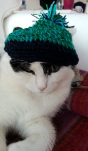 travellingbobblehat