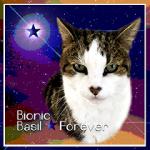 BIONIC BASIL Forever[S]